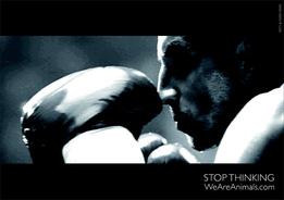 Видео Stop Thinking
