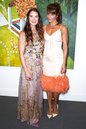 Брук Шилдс в Erdem и Хелена Кристенсен в Prada на ужине Take Home a Nude в Нью-Йорке