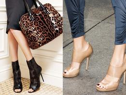 Коллекция женской обуви и аксессуаров осень-зима 2010/11