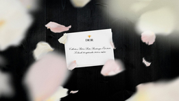 Показ Christian Dior в 15:30 по московскому времени