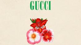 Показ Gucci в 20:30 по московскому времени